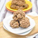 Peanut Butter Chocolate Protein Breakfast Cookies