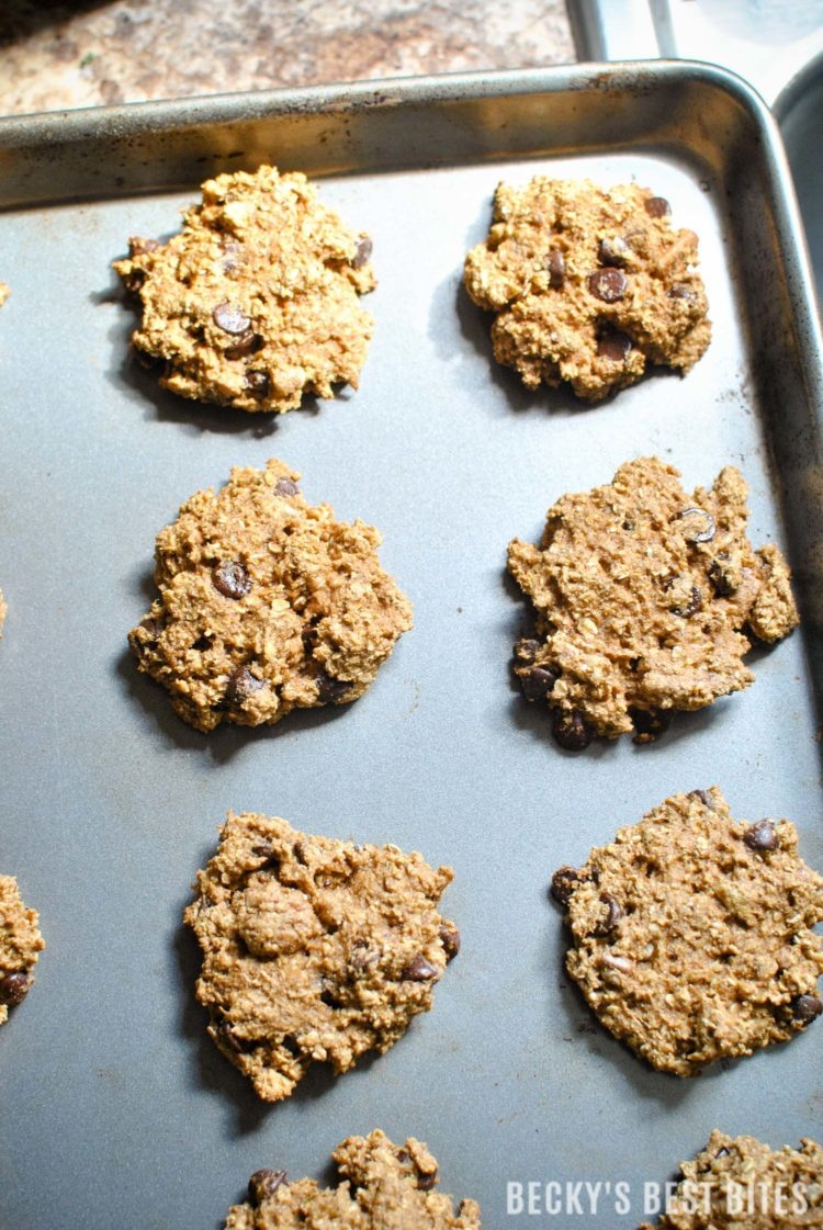 Healthy Pecan Chocolate Chip Pumpkin Oatmeal Cookies | beckysbestbites.com