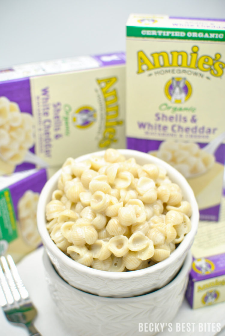 Got a busy summer planned? Feeding My Family Natural and Organic From Sam's Club couldn't be easier with this pantry staples to get food on the table fast! #RealGoodFood #ad| beckysbestbites.com @samsclub